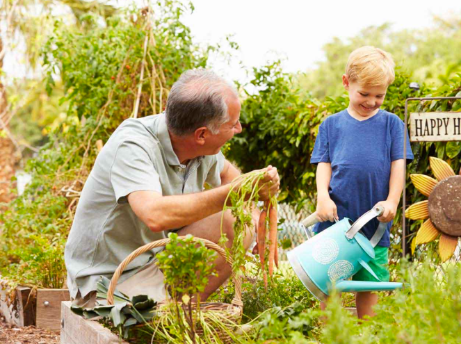 a-home-garden-fun-for-the-whole-family
